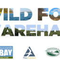 UPDATED! Wild For Wareham! April 17-24, 2021