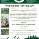 Wild Edibles Planting Day – May 15, 2021